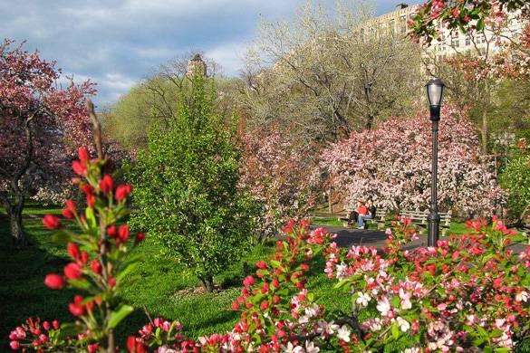 Geheime Gärten: New York Habitat Wohnungen in der Nähe von Gemeinschaftsgärten
