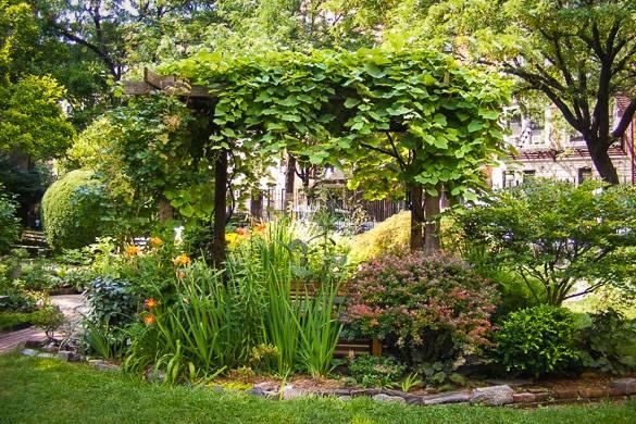 Mit Blättern bedeckte und von Blumen umgebene Gartenlaube im Clinton Community Garden