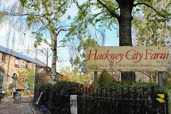 """Ein Schild mit der Aufschrift """"Hackney City Farm"""" mit Bäumen im Hintergrund"""