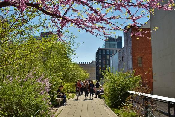 Bild von Leuten, die entlang des High Line spazieren