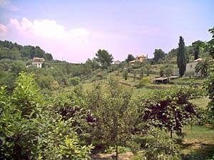 Grasse, capitale mondiale de la parfumerie