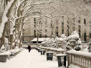 Fun Things to do in Winter in New York!