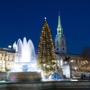 Photo : Arbre de Noël à Trafalgar Square