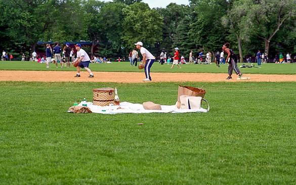 Image de Great Lawn à Central Park l'été