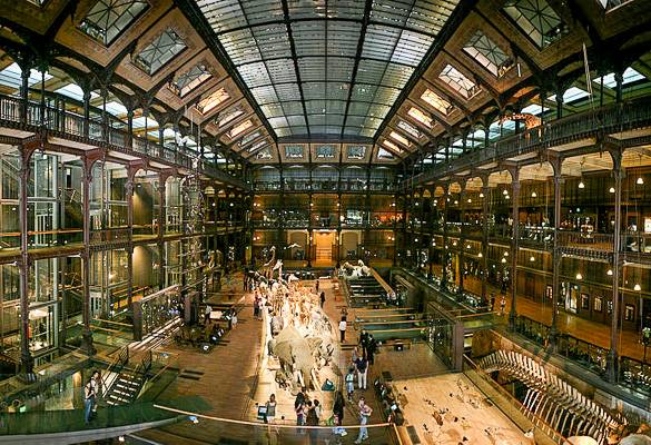 Photo de la Grande Galerie de l'Evolution à Paris au Musée d'Histoire Naturelle