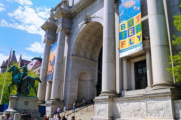 Photo du Musée d'histoire naturelle à Manhattan