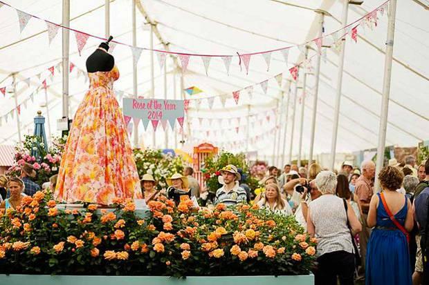 Photo de fleurs au Hampton Court Flower Show.