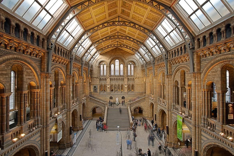 Photo du Musée d'histoire naturelle