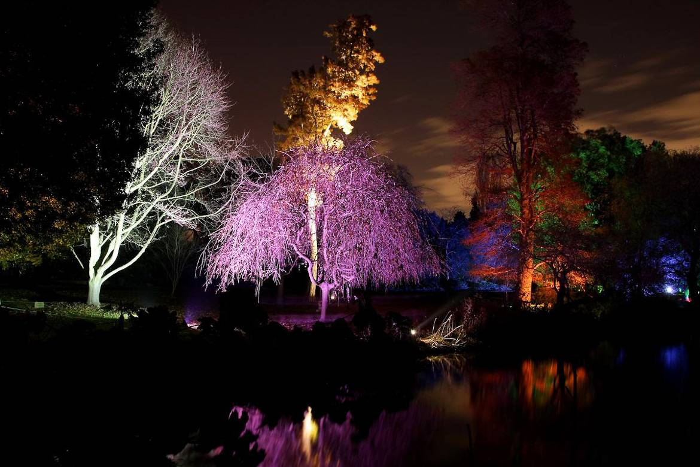 Le spectacle original Enchanted Woodland à Syon Park