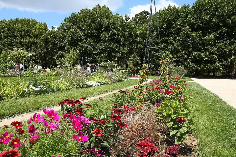 Photo du Jardin des plantes