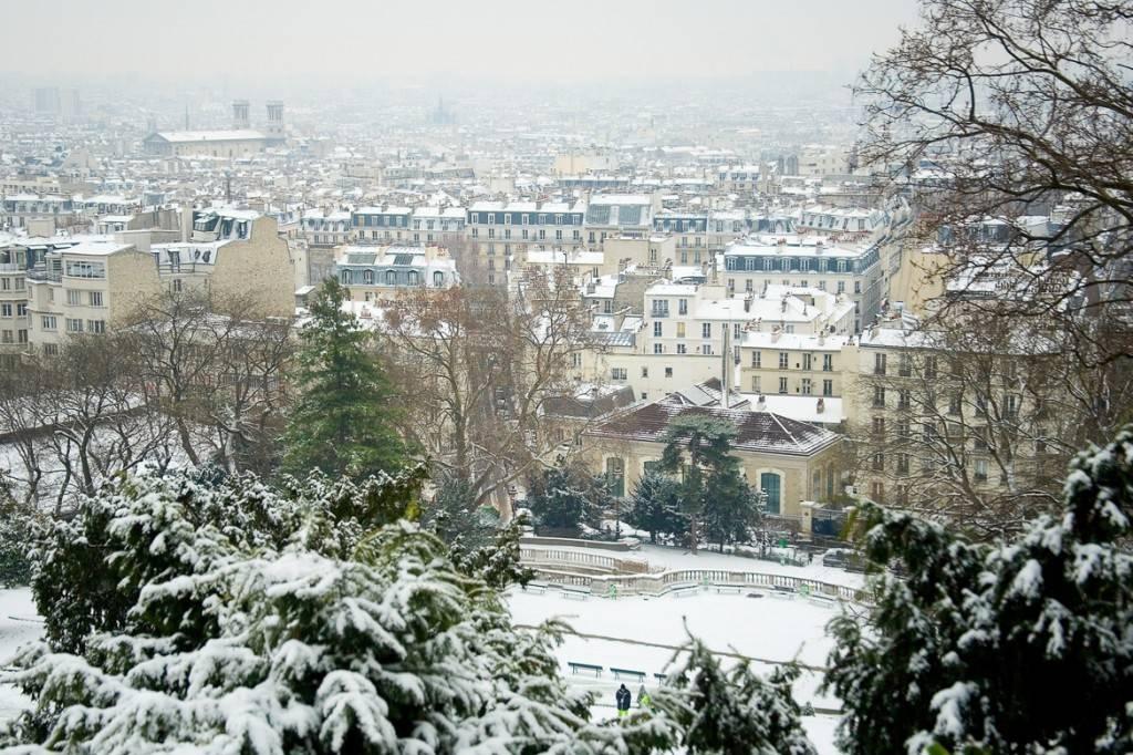 Photo d'arbres recouverts de neige, en hiver, devant les toits de la ville de Paris