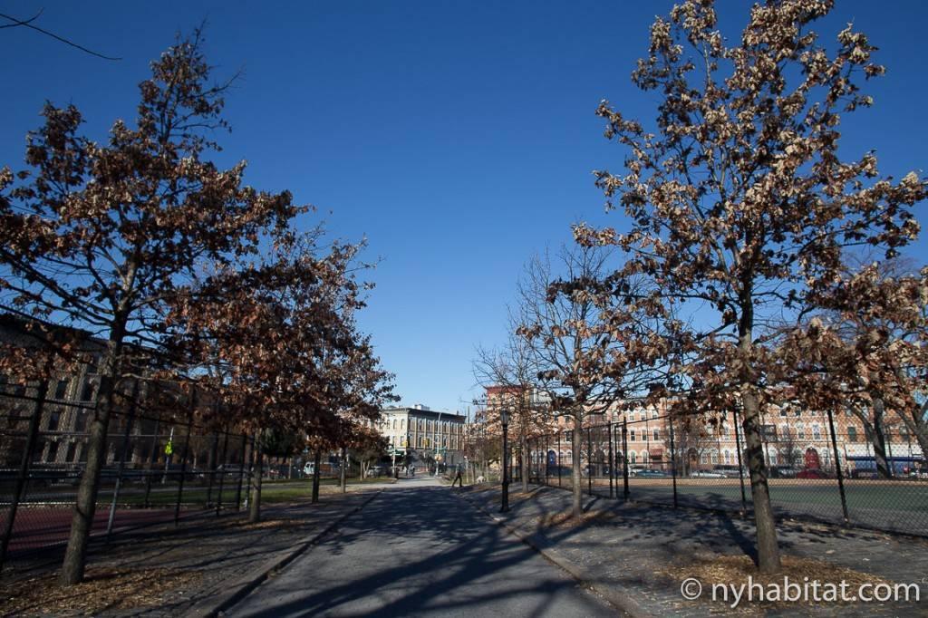 Photo d'une allée dans le Maria Hernandez Park à Bushwick, Brooklyn