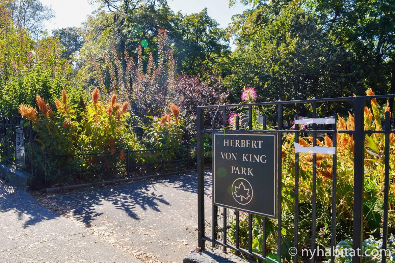 Photo de plantes à l'entrée de l'Herbert Von King Park dans le quartier de Bed-Stuy