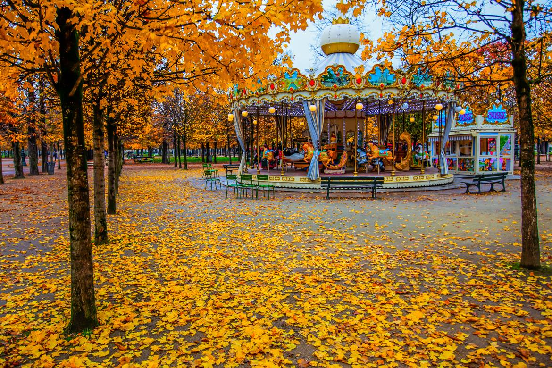 Photo du carrousel au milieu des arbres en plein automne, au jardin des Tuileries.