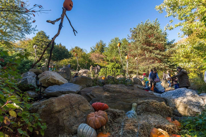 Photo de familles dans l'aire de jeux du jardin botanique de New York, décoré pour Halloween.