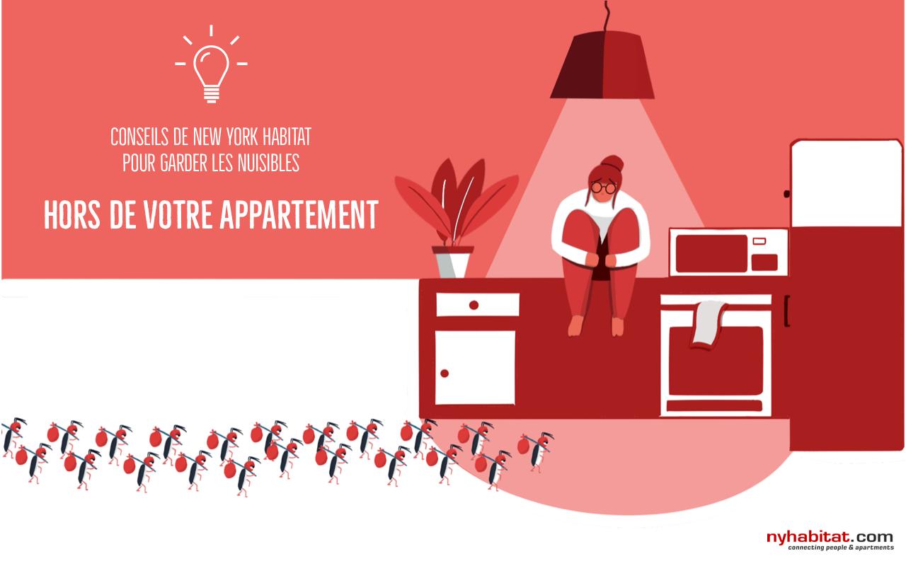 Graphique imagé représentant des cafards emménageant dans l'appartement d'un locataire visiblement nerveux.