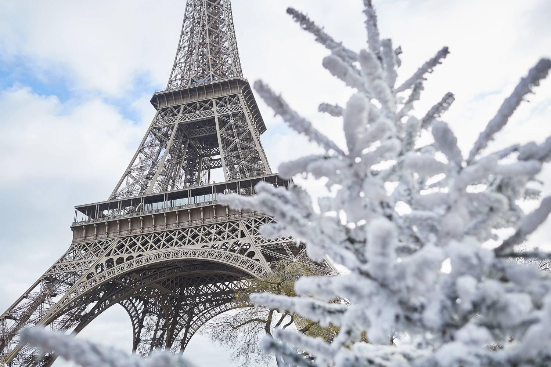 Photo de la tour Eiffel derrière une branche d'arbre couverte de neige au premier plan.