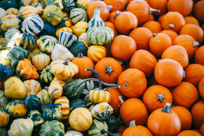 Photo de délicieuse citrouilles et courges vendues aux marchés bio.