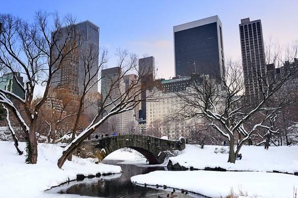 Immagine di Central Park a New York City durante l'inverno
