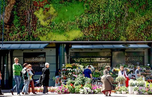 Immagine del Mercato Agricolo di Les Halles ad Avignone. Foto di Marta Favro.