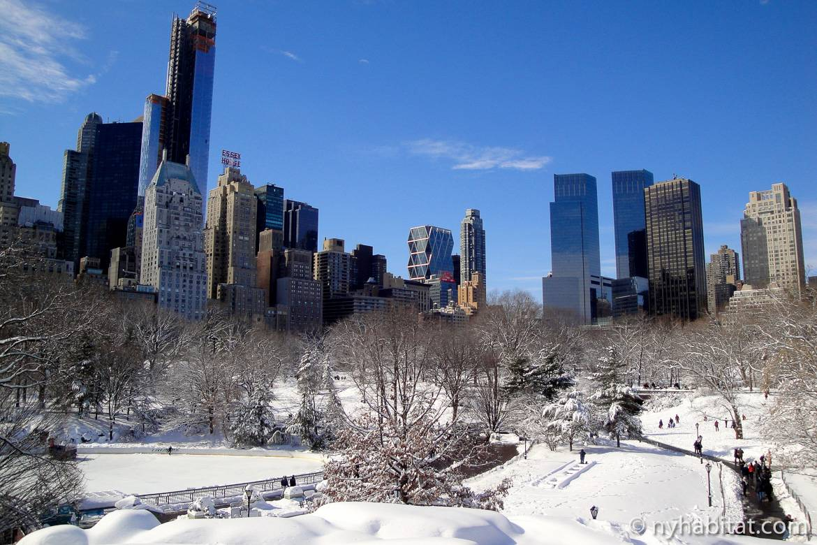 Immagine di Central Park in inverno