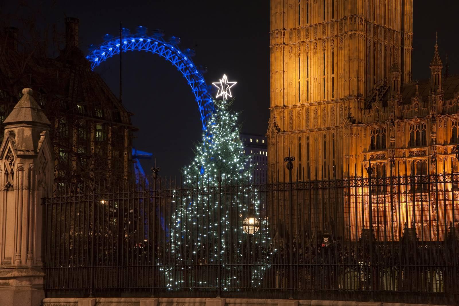 Foto di un albero di Natale fuori dal Parlamento