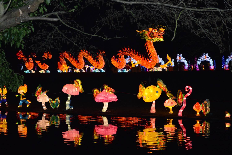 Immagini di lanterne con fattezze di draghi e funghi nel Chiswick Gardens Magical Lantern Festival.