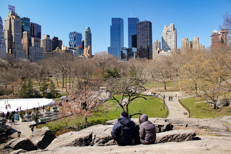 Immagine di vista su sentieri percorribili e pista di pattinaggio a Central Park nel periodo invernale, con coppia in primo piano.