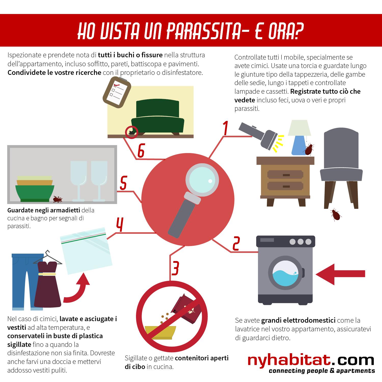 Infografica di New York Habitat che mostra 6 pratici consigli per inquilini che hanno trovato topi, scarafaggi o cimici nel loro appartamento.