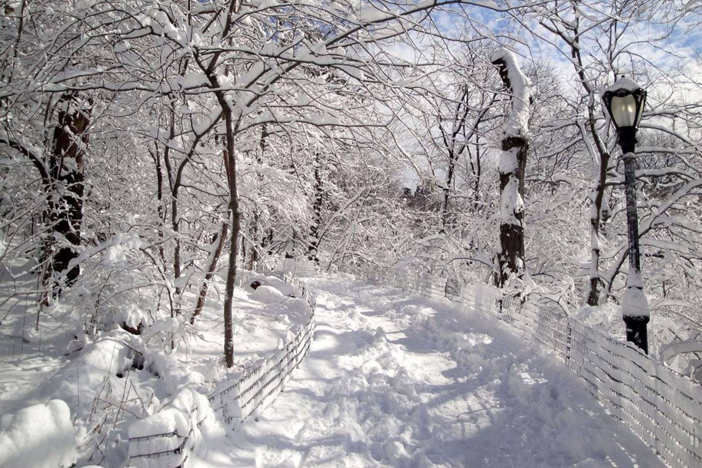 Immagine di un sentiero ricoperto di neve a Central Park