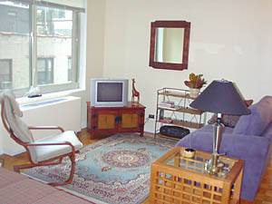 New York - Alcove Studio apartment - Apartment reference NY-10554