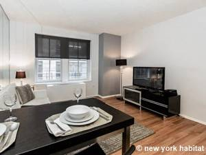 New York - 1 Bedroom apartment - Apartment reference NY-11180