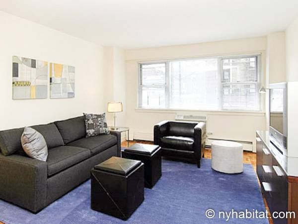 New York - 2 Bedroom apartment - Apartment reference NY-12919