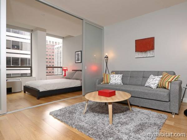 New York - 1 Bedroom apartment - Apartment reference NY-16776