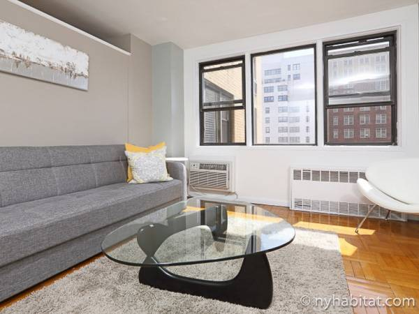 New York - Alcove Studio apartment - Apartment reference NY-17241