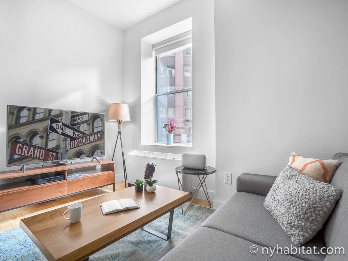 New York - 1 Bedroom apartment - Apartment reference NY-17750