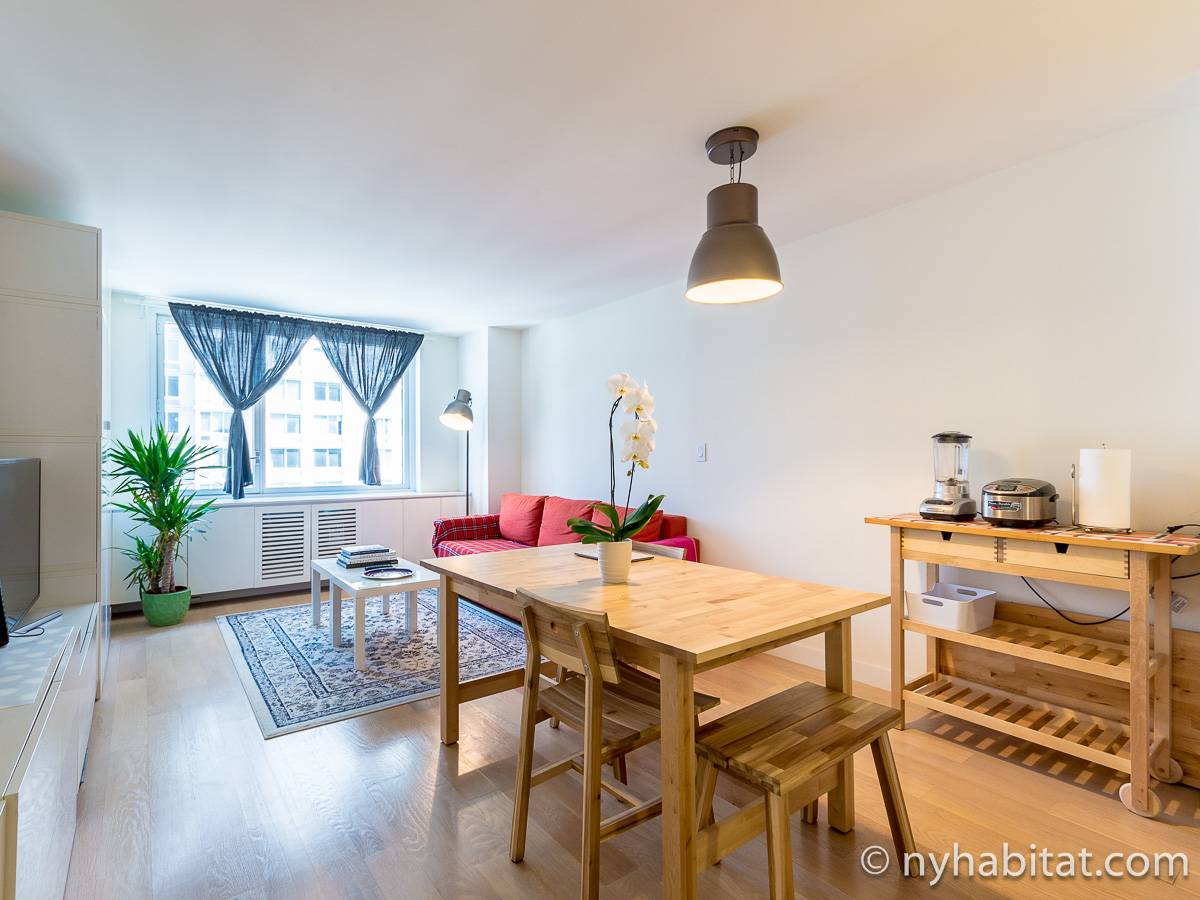 New York - 1 Bedroom apartment - Apartment reference NY-17926