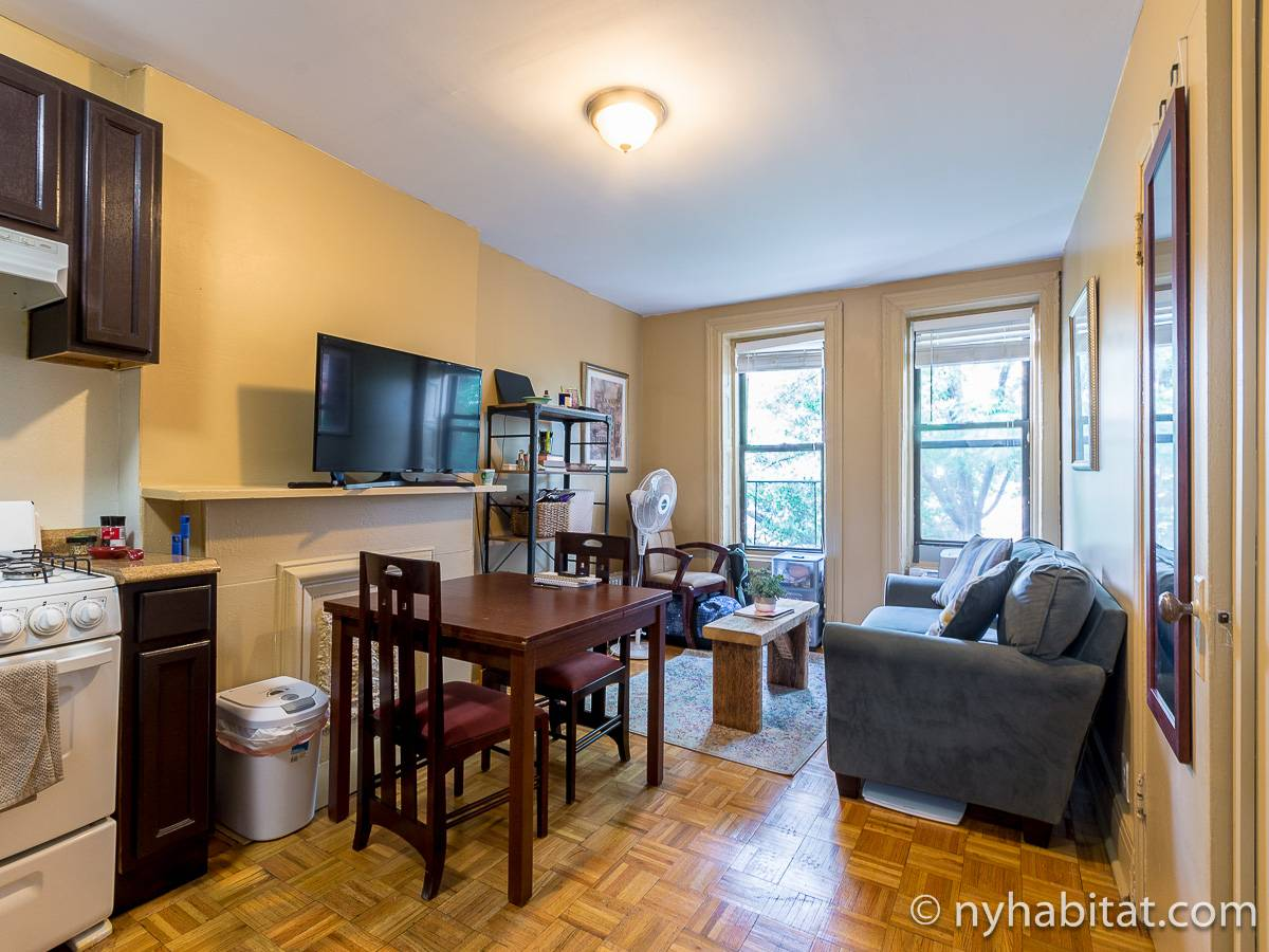 New York - 1 Bedroom apartment - Apartment reference NY-17997