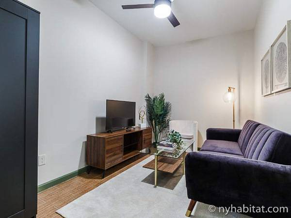 New York - 3 Bedroom roommate share apartment - Apartment reference NY-18144