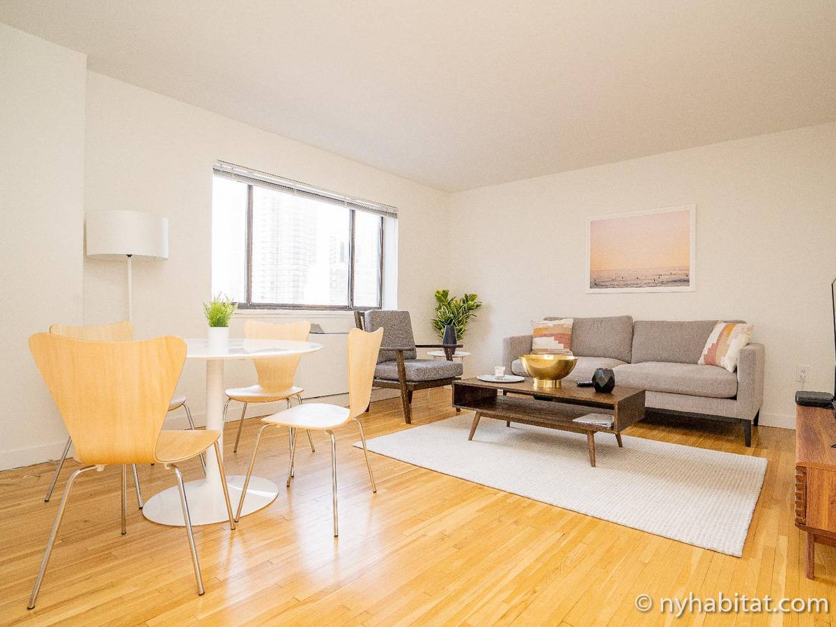 New York - 1 Bedroom apartment - Apartment reference NY-18458