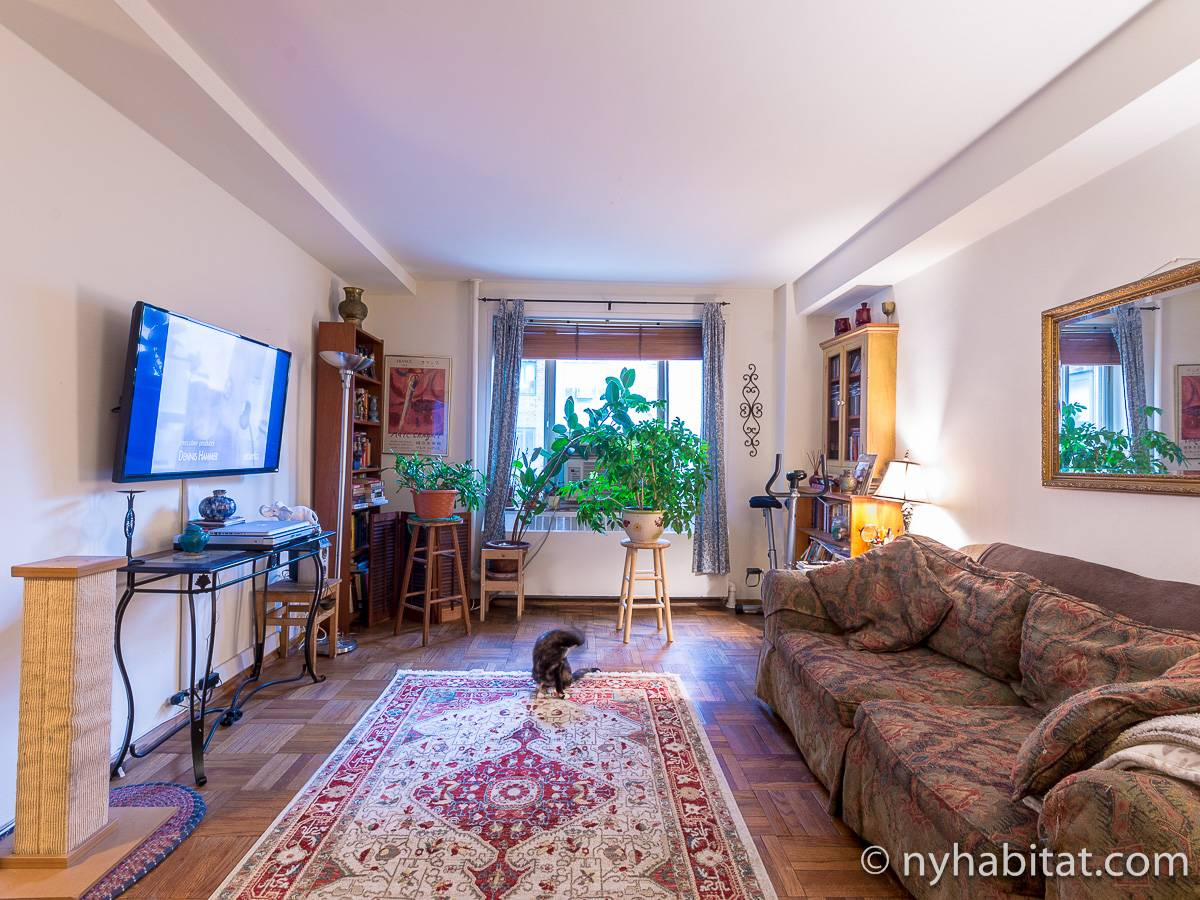 New York - 2 Bedroom roommate share apartment - Apartment reference NY-9283