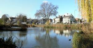 Barnes, el sitio soñado por los amantes de la naturaleza en Londres