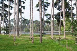 Parques de París – los 5 principales: el nº 4 – El Bosque de Bolonia