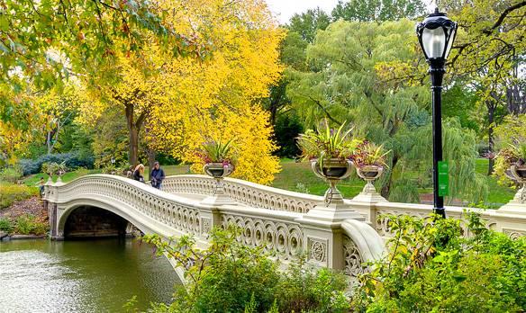 Fotografía del puente Bow en Central Park