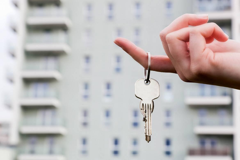 ¡Consejos para ser un buen casero de New York Habitat!