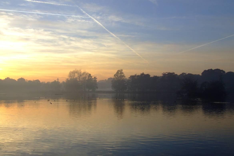 Imagen de Richmond Park