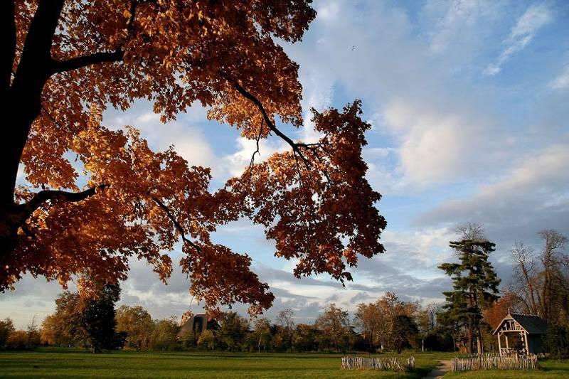 Imagen del Bosque de Vincennes
