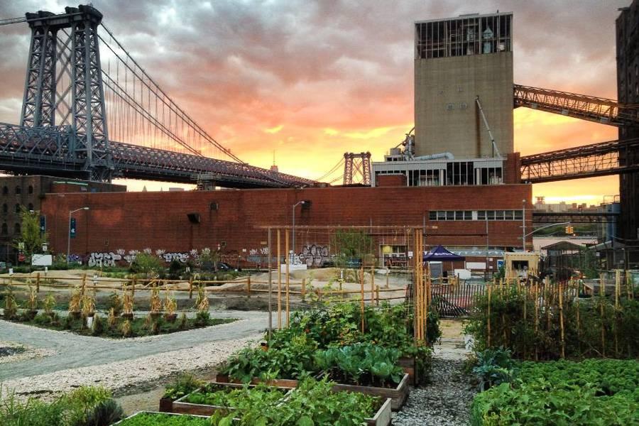 Imagen de las granjas del norte de Brooklyn
