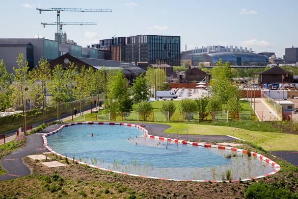 Fotografía del estanque de King's Cross Pond Club visto desde arriba, rodeado de árboles