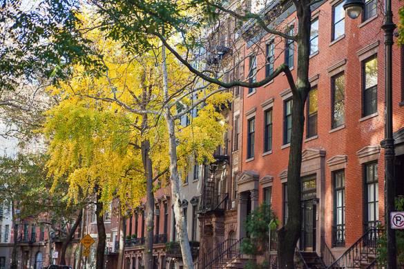 Imagen de calle con edificios de piedra rojiza arbolada con los colores del otoño